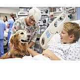 Boy, Hospital, Dog, Therapy Dog