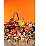 Harvest Festival, Thanksgiving, Autumn Decoration