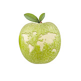 Environment, Food, World Hungry