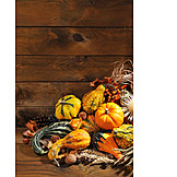 Copy Space, Squash, Autumn Decoration, Thanksgiving