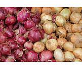 Onions, Onions