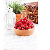 Picnic, Sour Cherry, Cherry