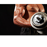 Dumbbell, Muscular build, Weightlifting