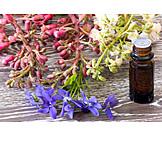 Homeopathic, Alternative Medicine, Bach Flowers