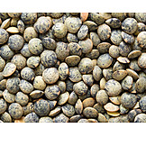 Spices & Ingredients, Lentil