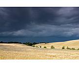Storm Cloud, Corn Field, Bad Weather