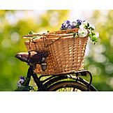 Flowers, Bi´cycle basket