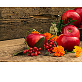Fruit, Apple, Autumn, Thanksgiving