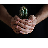 Security & Protection, Cactus
