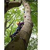 Sports & Fitness, Tree, Climbing