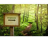 Umweltschutz, ökologisch, Klimawandel, Energiewende