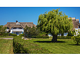 Property, Friesland, Thatched-roof House, Estate