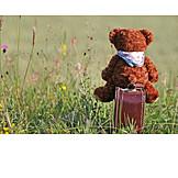Holiday & Travel, Teddy, Suitcase, Runaway