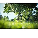 Park, Bicycle, Excursion