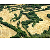Arable, Aerial View