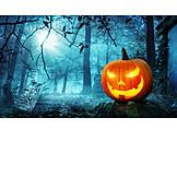 Wald, Kürbis, Halloween