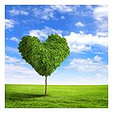 Umweltschutz, Herz, Umweltbewusstsein