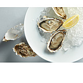 Oyster, Clam