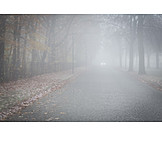 Gefahr & Risiko, Nebel, Landstraße