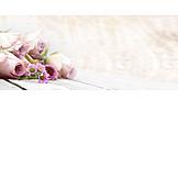 Roses, Floristry, Flower Arrangement