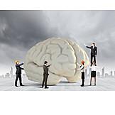 Erkunden, Neurobiologie, Hirnforschung