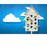 Bird house, Animal welfare, Birdhouse