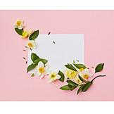 Valentinstag, Blumenmuster, Liebesbrief, Floristik, Blumendekoration