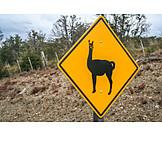 Information Sign, Wildlife, Ruta Nacional 40