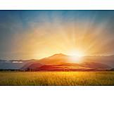 Landscape, Evening Sun, Light Moods