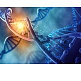 Research, Biochemistry, Dna