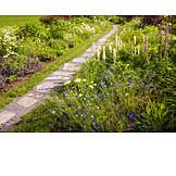Flower garden, Garden path