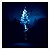 Forest, Christmas, Stars, Magic