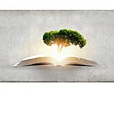 Bildung, Fantasie, Wissen, Erkenntnis, Vorstellungskraft