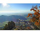 Lower austria, Eastern alps, Vienna basin