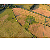 Field, Arable, Agriculture, Aerial View
