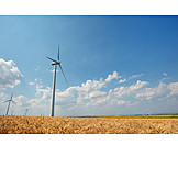 Wind Power, Alternative Energy, Green Electricity