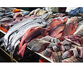 Fish, Fish Market, Market Stall