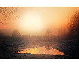 Twilight, Landscape, Sunset, Fog, Mystical, Swamp