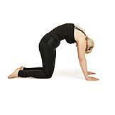 Yoga, Strain, Back Exercises