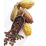 Hot chocolate, Cocoa fruit, Cocoa bean
