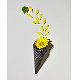 Flowers, Ice cream wafer