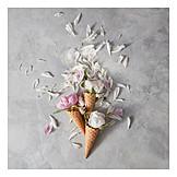 Petals, Summer, Ice cream cone