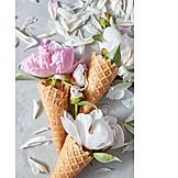 Petals, Ice Cream Wafer, Summer