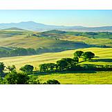 Hill, Tuscany