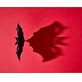 Halloween, Shadow, Bat