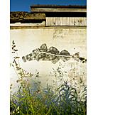 Fish, Wall Drawing