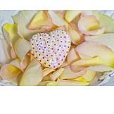 Heart, Rose Leaves, Romantic