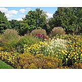 Park, Flower bed