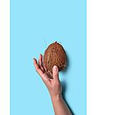 Hand, Coconut