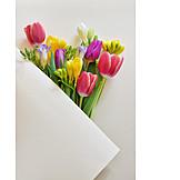 Muttertag, Verpacken, Frühlingsstrauß